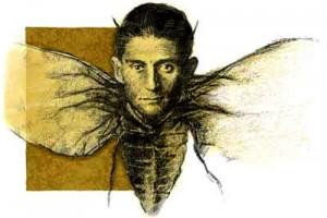 franz-kafka insetto