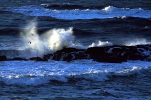 Pacific_ocean_5