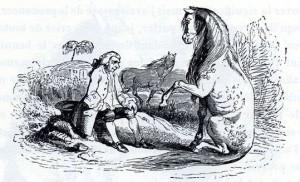 gulliver-col-cavallo