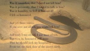 d h l snake